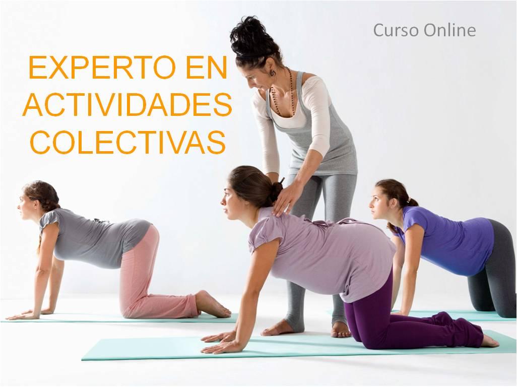 Experto en Actividades Colectivas para Fisioterapeutas