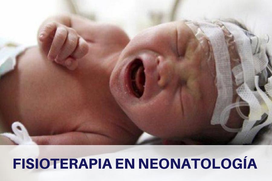 Curso online Fisioterapia en Neonatología