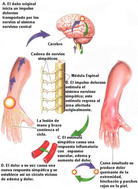 El dibujo sensitivo y expresivo de la figura humana cfnm - 4 3