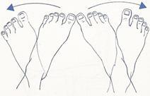 El tobillo anatomía y lesiones más frecuentesl