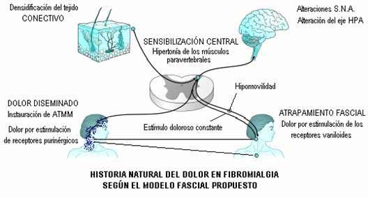 cura de la fibromialgia pdf