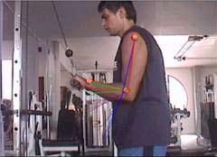 Análisis biomecánico de flexión y extensión del antebrazo