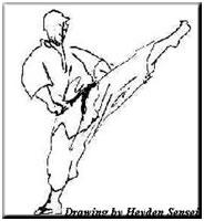 Analisis biomecánico de la articulación tibiotarsiana de la extremidad derecha en la técnica Mae Geri realizada por deportistas elites de la liga vallecaucana de karate do