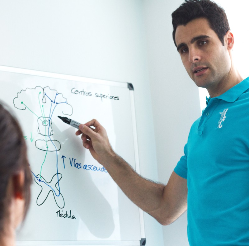Concepto Maitland ® de Fisioterapia Manual. Nivel 1. MADRID ( 3ª EDICIÓN )