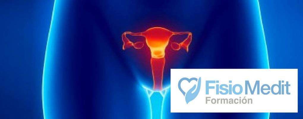 Método ProPiocePtivo PelviPerineal 5P. Enfoque global de la reeducación perineal y disfunciones de suelo pévico.
