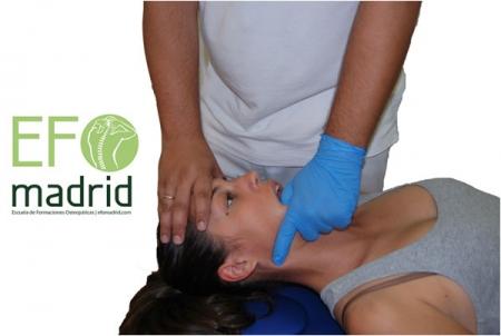 Tratamiento de la Articulación Temporo Mandibular (ATM)