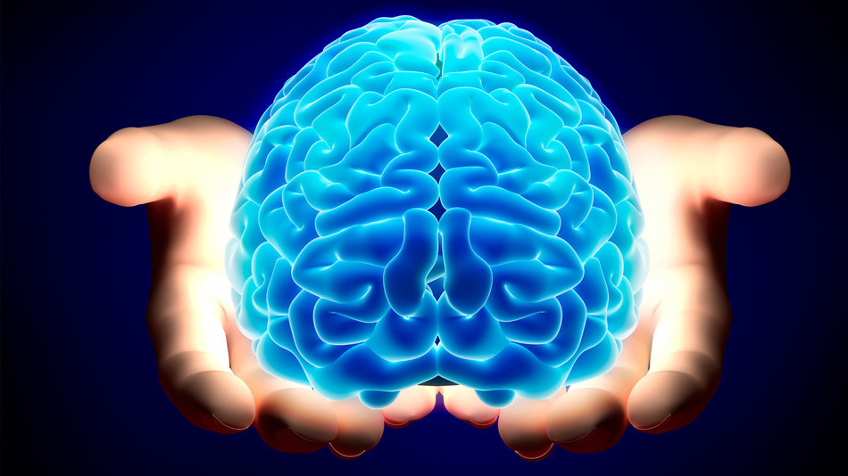 CONCEPTO BOBATH: Pacientes con trastornos neuropsicológicos. ¿ Por qué no hacen lo que queremos?