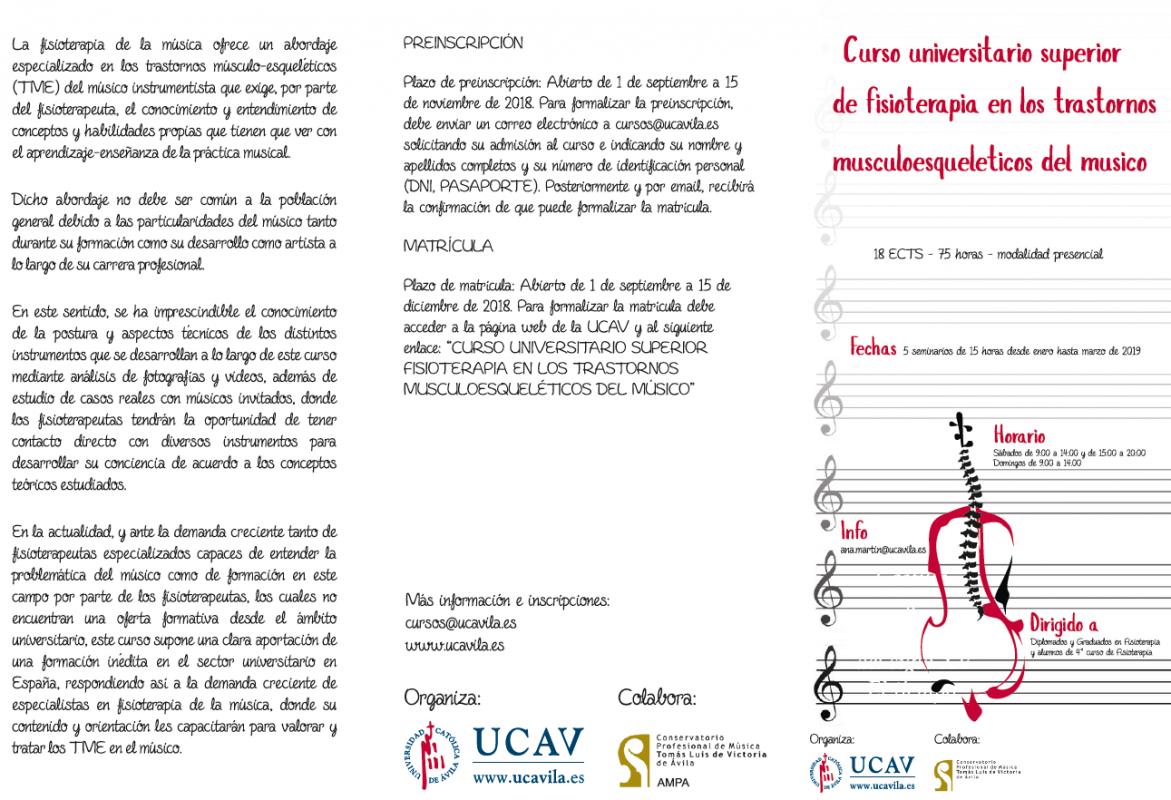Fisioterapia en los trastornos musculoesqueleticos del músico