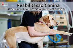 REHABILITACIÓN CANINA – La únión de lo mejor de la Fisioterapia y Veterinaria