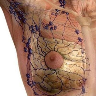 Tratamiento del edema linfático y venoso. Método Leduc®