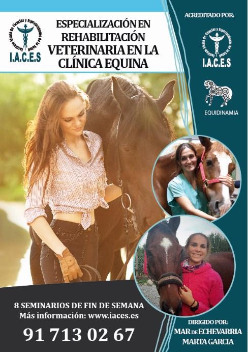 Especialización en rehabilitación veterinaria en la clínica equina