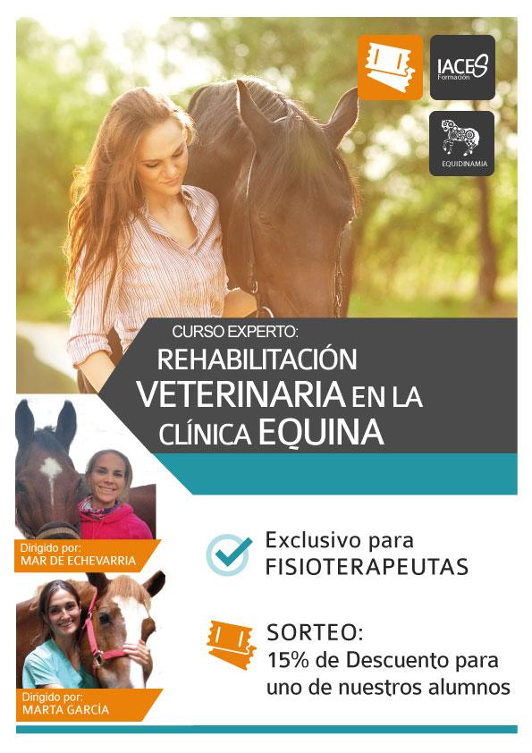 Curso de Especialización en Rehabilitación Veterinaria en la clínica equina