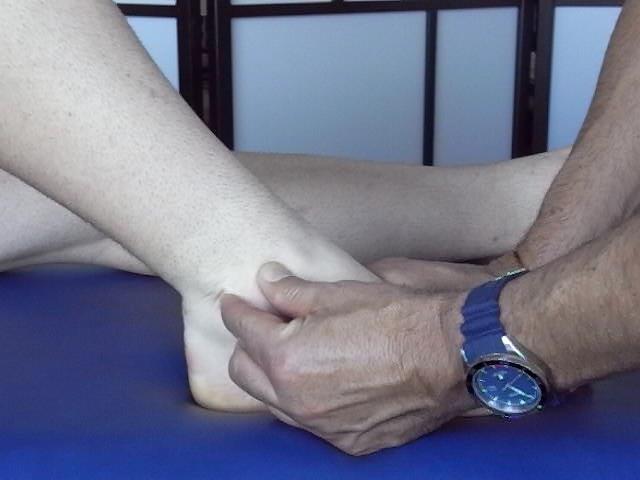TERAPIA MANUAL BASADA EN EL CONCEPTO OSTEOPATICO DEL MIEMBRO INFERIOR