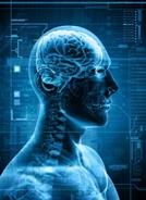 Introducción a la Psiconeuroinmunología clínica (PNIc)