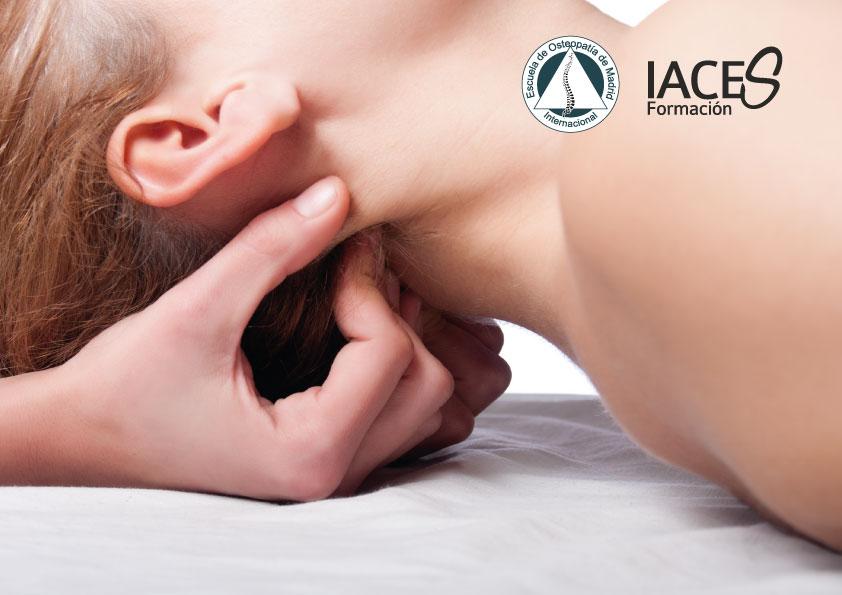 1ª Jornada Valenciana de Especialidades en Fisioterapia