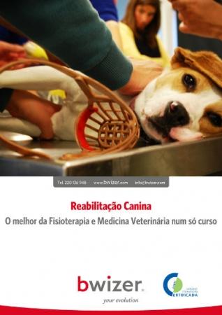 REHABILITACIÓN CANINA | Lo mejor de la Fisioterapia y Veterinaria