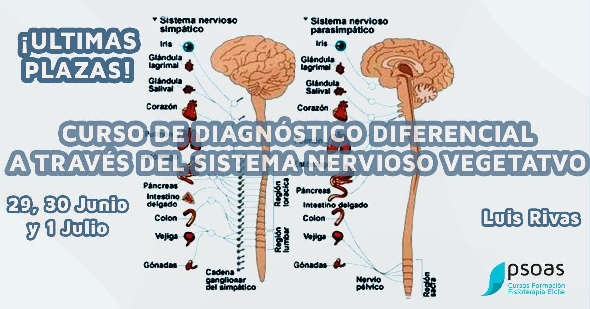 Curso de Diagnóstico Diferencial A través del Sistema Nervioso Vegetativo ¡ÚLTIMAS PLAZAS! Alicante