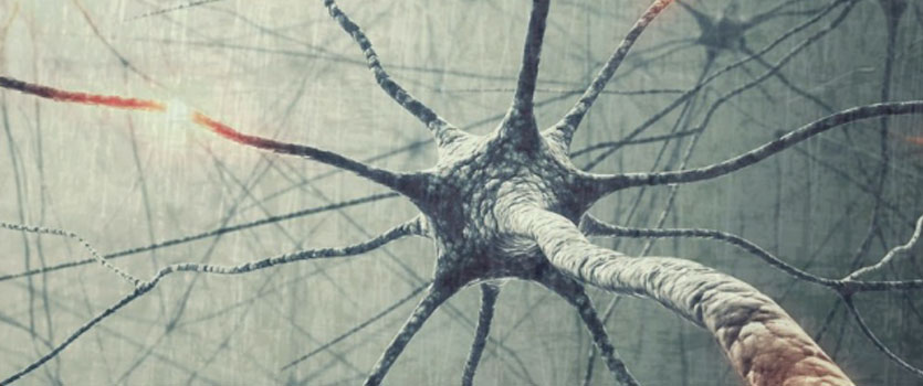 TERAPIA NEURAL. NEUROMODULACIÓN: ESTIMULACIÓN NEURAL ELÉCTRICA