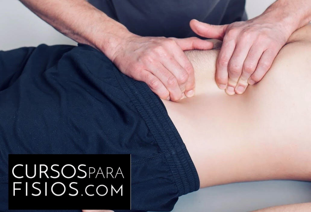 Curso TMI - Terapia Manual Integrativa - Febrero 2020