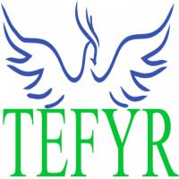 TEFYR