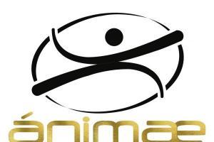 Entrenador Personal - Ánimae Health Studio Benidorm