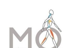 Moral Osteopatía