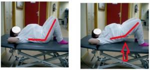Lumbalgia y embarazo: Prevención y tratamiento mediante ejercicios terapéuticos.