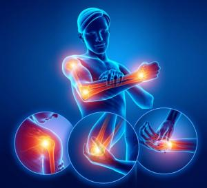 Fisioterapia manual musculoesquelética