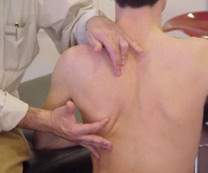 Curso Monográfico de Hombro: Abordaje fisioterapéutico de los principales problemas de hombro