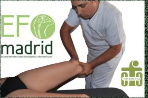 OSTEOPATÍA ESENCIAL (CURSO DE VERANO)