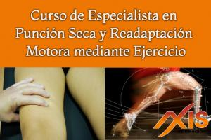Curso de Especialista en Punción Seca y Readaptación Motora mediante Ejercicio. Edición III
