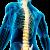 Stretching Miofascial Postural (SMP)
