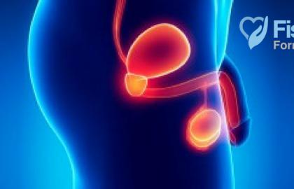 REEDUCACIÓN PERINEAL MASCULINA: Abordaje manual en las disfunciones urológicas y del periné masculino