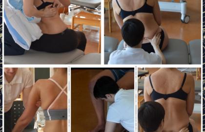 Introducción al Concepto Bobath en el adulto. Movimiento Normal