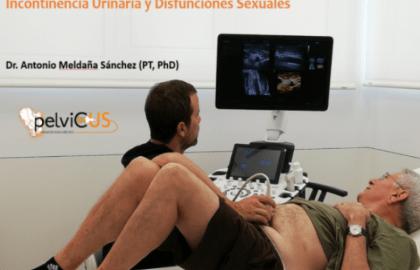 FISIOTERAPIA EN EL SUELO PÉLVICO DEL HOMBRE: Incontinencia Urinaria y Disfunciones sexuales IIª Edición