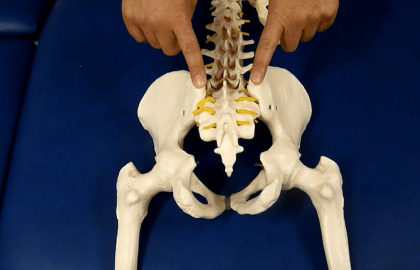MASTER OSTEOPATIA ESTRUCTURAL ICOMED