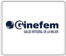 GINEFEM