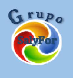 Grupo Salyfor