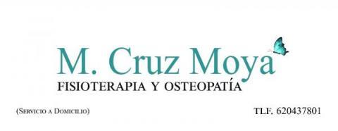 Fisioterapia Moya