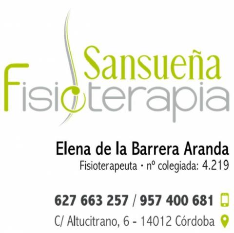 Fisioterapia Sansueña