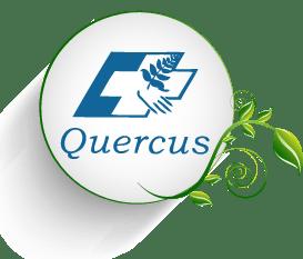 QUERCUS - Fisioterapia y osteopatía