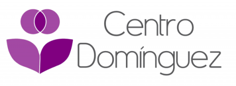 Centro Domínguez