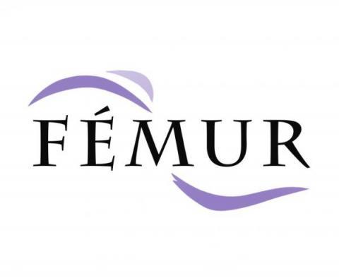 Clínica Fémur