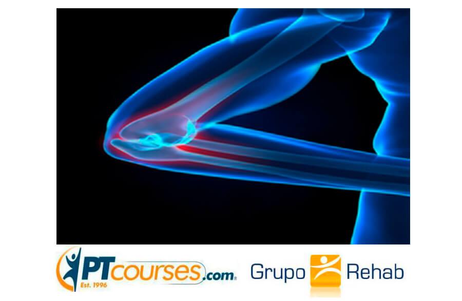 Fisioterapia en las Tendinopatías del Codo -Epicondilitis Lateral y Medial